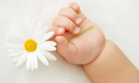 Gestazione per altri in Ucraina: una destinazione ideale per effettuare la maternità surrogata commerciale