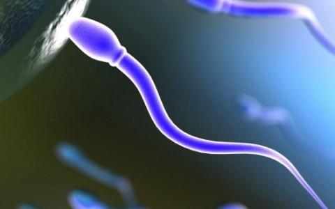 Sterilità